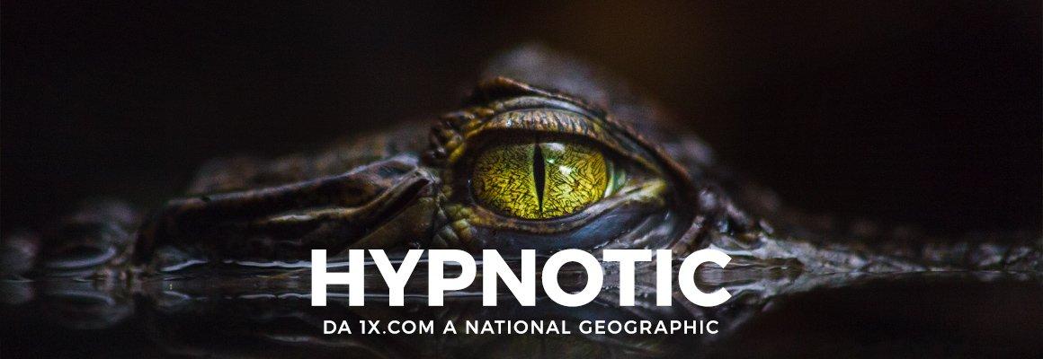 """Copertina """"HYPNOTIC – DA 1X.COM A NATIONAL GEOGRAPHIC"""""""