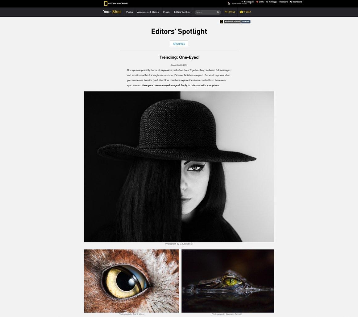 "National Geographic pubblica Hypnotic su Tumblr per l'articolo ""Trending: One-Eyed"""