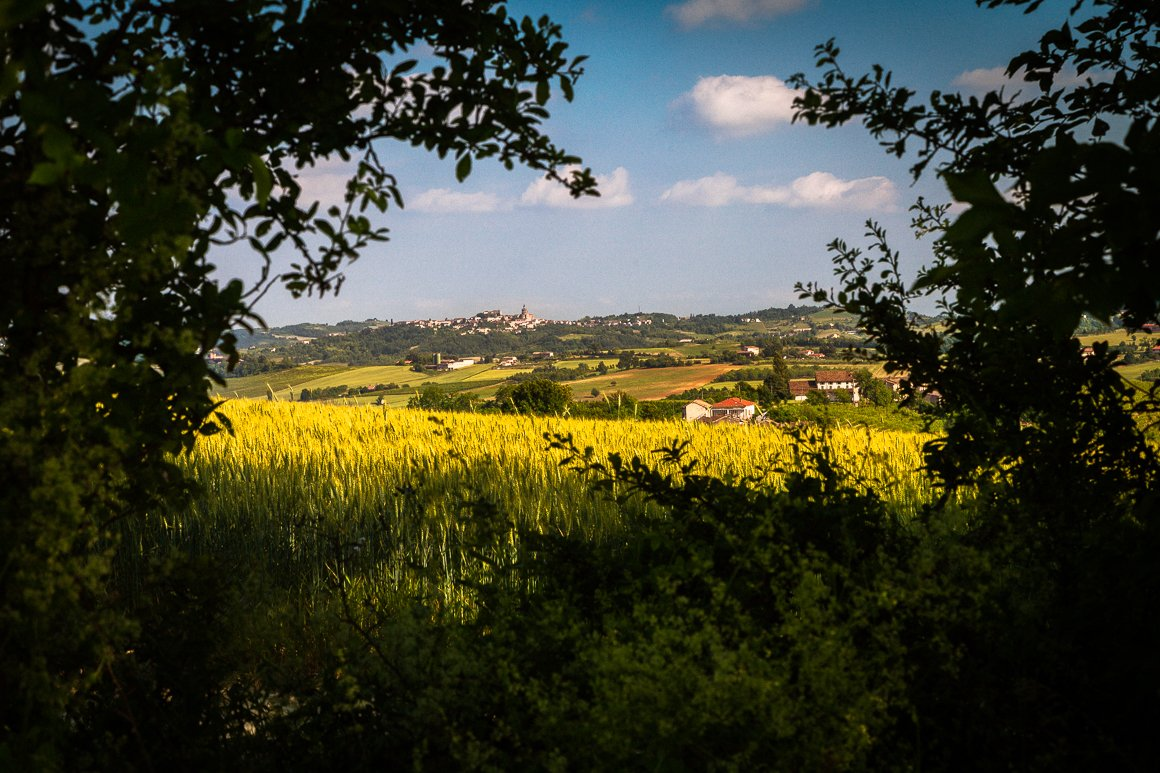 Fotografia di paesaggio sulle colline del Monferrato, Langhe e Roero