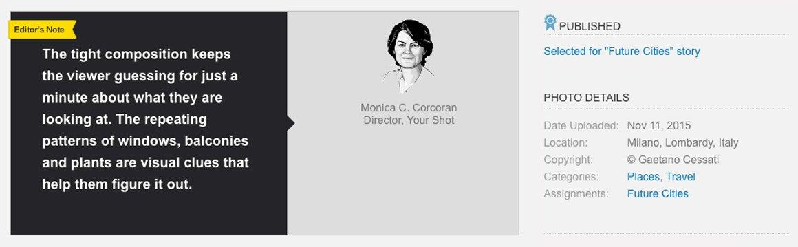 Monica Corcoran ha commentato la mia foto del Bosco Verticale per il National Geographic