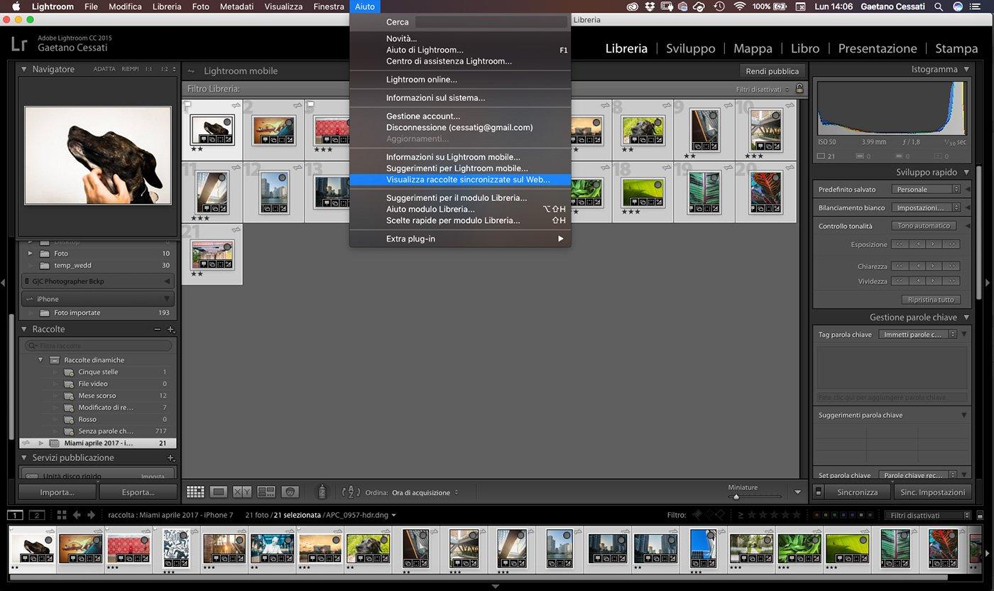 Visualizzare una raccolta sincronizzata di lightroom sul web
